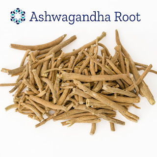 ashwagandha (Withania somnifera) root is used as a dietary supplement