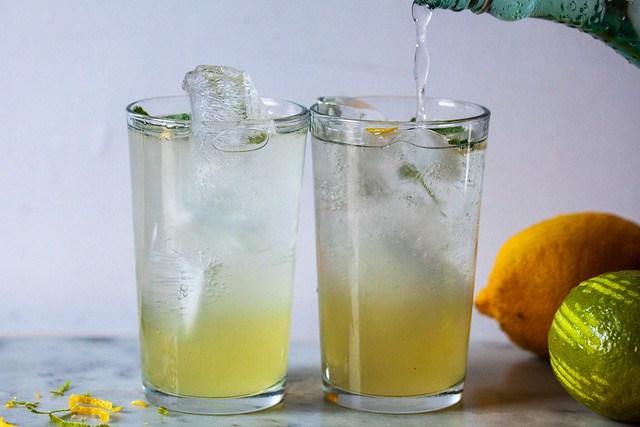 lemon and lime mintade